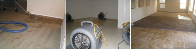 Tempe, AZ Super Savers Restoration is a Water Restoration Company that offers 24 hour Water extraction Service, Flood Restoration, Water Removal, Water Damage Service, Flooded Carpets in The Phoenix AZ Areas Water Restoration Tempe, AZ Water Extraction Tempe, AZ Flood Restoration Tempe, AZ Flooded C
